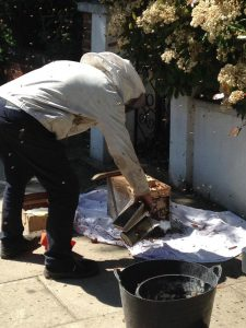tree surgeon london removing beehive from home in ealing